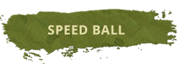 paintball-zone-speedball-title